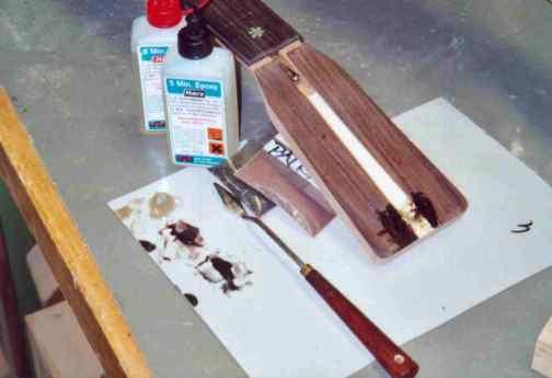 Inserting the abalone logo